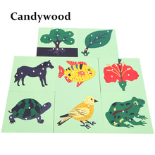 8 style Montessori Materials Animal Plant Shape Puzzles Baby Kids Wooden Learning Educational Toy Wooden Toys(China)