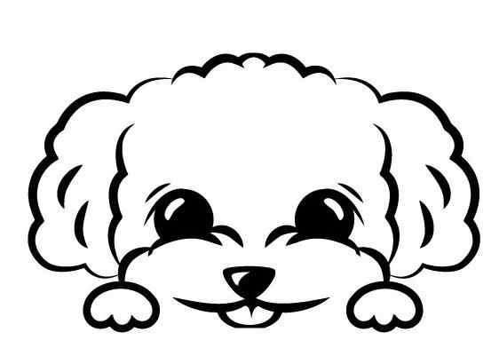 Detail Feedback Questions about Chira sticker toy poodle peeks out ...
