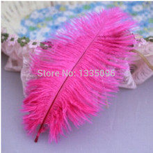 10PCS /Mei red natural ostrich feather fan manufacturing 15-20CM6-8 inch new Christmas Halloween Party(China)