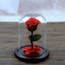 5 Color The Beautiful Glass Cover Fresh Preserved Rose Flower Wedding Home Birthday Party Car Decoration(China)