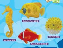 Smare underwater dolphin seahorse shark a turtle 4 d 3 d puzzle egg model kit DIY early childhood education education toys