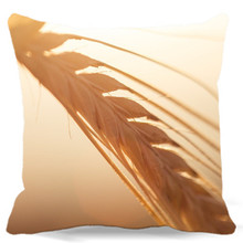 Mung bean wheat-straw Soft square cotton polyester cushions cover home car bed decorative pillow case corn HOME textiles