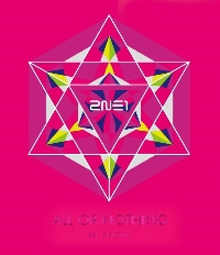 2014 2NE1 WORLD TOUR LIVE - ALL OR NOTHING IN SEOUL <br>