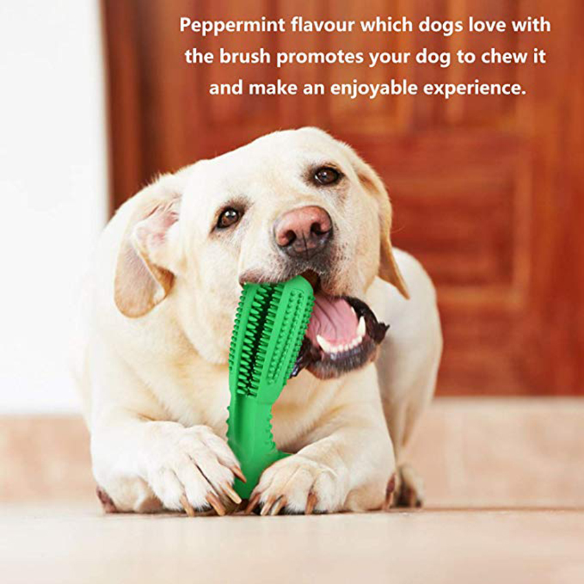 Oral Care Bite Stick For Dog Image