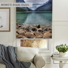 MOMO Painting Window Curtains Roller Shades Blinds Thermal Insulated Blackout Fabric Custom Size,PRB set318-320