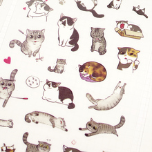 6Sheets/lot Cute Mini Cat Pvc Transparent Korean Sticker Decoration Diy Ablum Diary Scrapbooking Label Sticker Kawaii Stationery