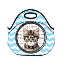 Cat Waterproof Lunch Bags Cooler Insulated Lunch Box Tote For Women Men Carry Bag Insulation Thermal Picnic Storage HandBag