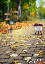 LIFE MAGIC BOX Photography Backdrops Yellow Leaves Road, Street Signs Background Fz1 Photo Studio Mh-5221(China)