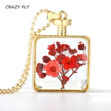 CRAZY FLY 2017 Fashion Glass Perfume Bottle Necklace Retro Crystal Natural Dried Flowers Necklace Pendant X'mas Gifts