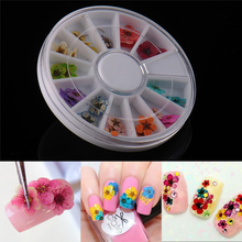 12 Colors Dried Dry Flower Nail Art Stickers Wheel Decoration Manicure Tips nail art 36pcs/box DIY 3D Design Nails Tool Supplies