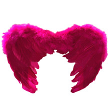 2017 New Cosplay Feather Wing Set Kids Performance Prop Children Party Angel Fairy Carnival Costumes Black/ White/ Red/ Pink