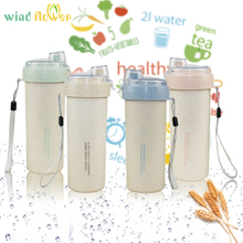 Wind flower Creative Wheat Straw Sport Water Bottle Simple Plastic Portable Water Bottle(China)