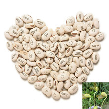 100PCS Magic Growing Message Beans Seeds Magic Bean English Magic Bean Bonsai Green Office Home Decoration Magic Beans 08004(China)