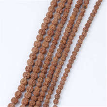 TSB0530 Real Nepal Small Rudraksha 108 beads Strand 4mm 5mm 6mm 7mm 8mm 9mm 10mm 11mm 12mm General Quality