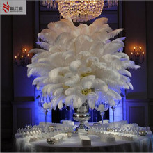 2016 50PCS natural white ostrich feather 25-30 cm / 10 to12 inches  feathers wedding decoration performance art plume