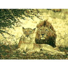 Frameless Picture Couple Lion painting by numbers wall pictures for living room hand painted oil painting Abstract Oil Painting