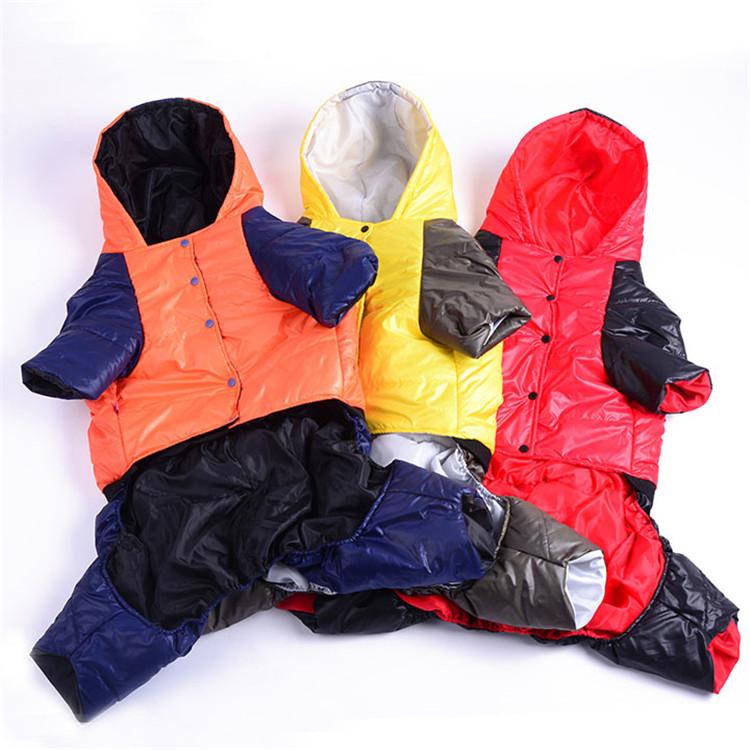 PET clothes17