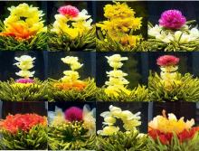 20pcs different kinds of blooming tea balls, Chinese artistic flower tea, vacuum package(China)