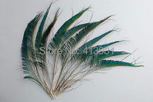 Freeshipping!30pcs/Lot SWORD PEACOCK FERN FEATHERS 12-14 Inches 30-35cm Left or Right side(China)