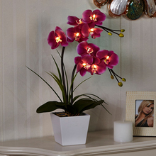 "Simulation flower20"" (50cm) LED Blossom Orchid Flower Light 9PCs WarmLED with 2*AA Battery pot 9 BlossomOrchid Flowerswithbuds(China)"
