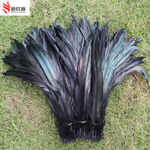 Wholesale 500PCS Black Rooster Tail Feathers 30-35 cm / 12-14 inches(China)