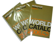 we print 300,500,1000 copies catalogue,brochure,magazine with good price .
