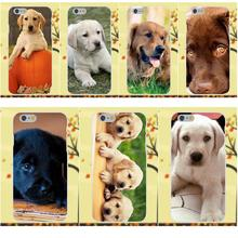 Soft Protector For Apple iPhone X 4 4S 5 5C SE 6 6S 7 8 Plus Galaxy Grand Core II Prime Alpha Labrador Retriever Dog Puppy(China)