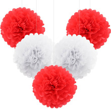 Buy 5pcs pompon Tissue Paper Pom Poms Flower Kissing Balls Home Decoration Festive Party Supplies Wedding Favors for $2.31 in AliExpress store