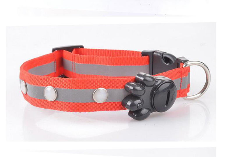 dog collar for small dogs (4)