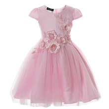 Girls Dress 2017 New Elegant Baby Princess Frock Appliques Flower Children Ball Gown Kids Party Wedding Dresses Costume for Girl