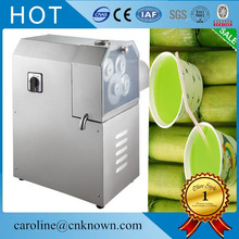 High-power electric fruit juicer electric sugar cane juicer extractor(China)