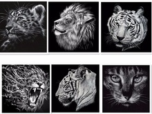 DIY 5D Diamond Painting Cross Stitch Full Diamond Embroidery Tiger Cat Lion Mosaic Pasted Painting Black & White Animal  F015