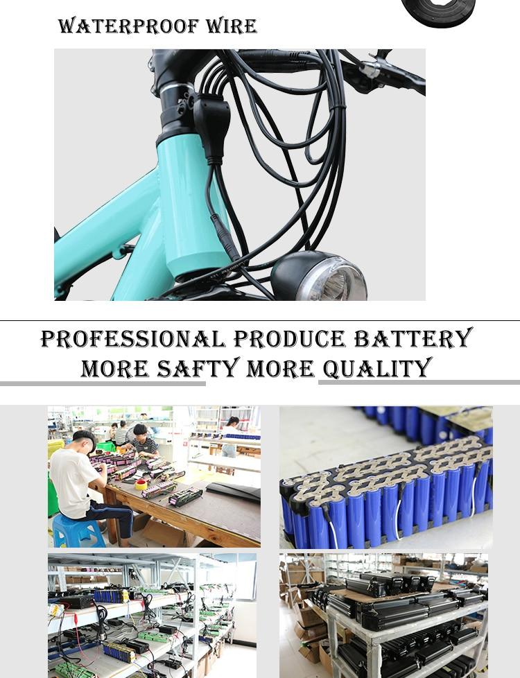 electric bike kit (7)