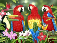 DIY 5d diamond painting animals red parrots Paste pictures full diamond mosaic cross stitch diamond embroidery art room decor