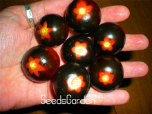 Promotion!50 Pcs/Package RED BUMBLE BEE TOMATO SEEDS! VERY RARE!Good tasty!Vegetable Seed,#TMPTMU