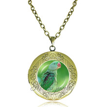 Green parrot necklace long chain parrot locket pendant statement necklaces glass animal jewellery accessories vintage jewelry(China)