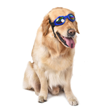 Wholesale Pet Shop Pet Sunglasses Charm Dog Gromming Goggles Pet Accessories Dress up as Cool Fashion Oversized padded(China)