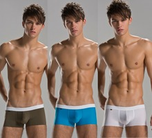3pcs/lot ZOD Men's Sexy High elastic Seamless Comfy soft letters boxer underwear