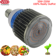 1Pcs 100w 50w 150w 200w Led Hydroponics Grow Chip Light 300w 120w Full Spectrum COB LED grow Lamp for Flower Plants,Vegetable(China)