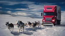 2017 Snow Dogs Trucks Fantasy Art Digital Art Artwork 4 Sizes Wall Picture Canvas Print