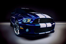 Ford Mustang Shelby Cobra Emblem Muscle Car Poster Canvas Printing Decor Art