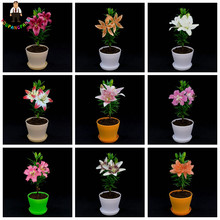 Cheap Perfume Lilies Seeds 200 Pcs Lily Seeds, Mixed Different Rare Flower Plant Bonsai Perennial Garden Flowers Hot Sale(China)