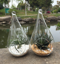 Set of 2 teardrop plant terrariums, hanging indoor planters great for air plants or succulents, garden decoration(China)