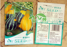 Min Mix $8,free shipping,5pack,Microphone melon seeds small surface striped ornamental pumpkin,garden supplies,vegetable grain