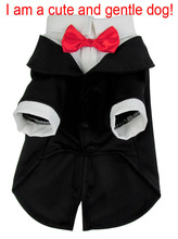 Pet clothes business suit with bow tie pet clothing for dogs four sizes S-XL with hat for cat puppy dog clothes Perro abrigo.