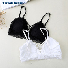 Buy AfroditaUme Lace Padded bras bralette Sexy Strappy bra Female Women Wirefree Underwear crop top Lingerie Brassiere