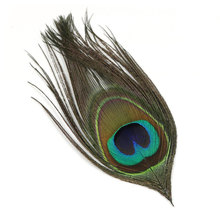 10PCS Natural Peacock Eye Feather Fly Tying Streamer Flies Body Material(China)