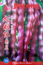 Vegetable seeds Nine red purple beans seeds spring and autumn sow beans 55days harvest 20 g/bag