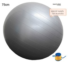 75CM Home Exercise Workout Fitness Yoga Ball For Weight Lose Exercise Training and Balance Exercise With Free Pump(China)