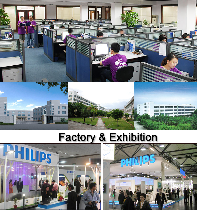 new company view